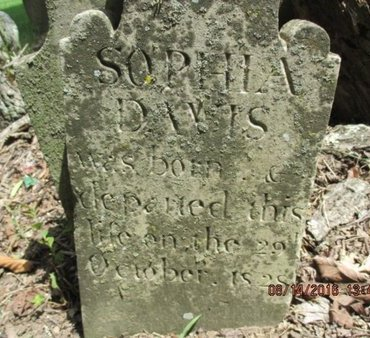 DAVIS, SOPHIA - Williamson County, Tennessee | SOPHIA DAVIS - Tennessee Gravestone Photos
