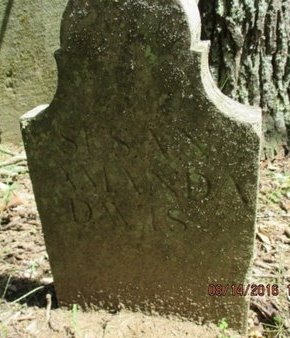 DAVIS, SUSAN AMANDA - Williamson County, Tennessee | SUSAN AMANDA DAVIS - Tennessee Gravestone Photos