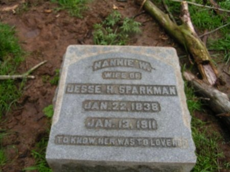 SPARKMAN, NANNIE W. - Williamson County, Tennessee | NANNIE W. SPARKMAN - Tennessee Gravestone Photos