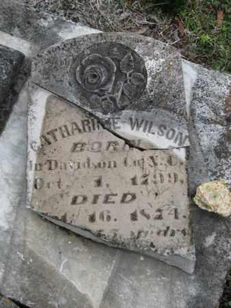 WILSON, CATHERINE - Williamson County, Tennessee | CATHERINE WILSON - Tennessee Gravestone Photos