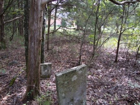 *CEMETERY VIEW,  - Wilson County, Tennessee |  *CEMETERY VIEW - Tennessee Gravestone Photos