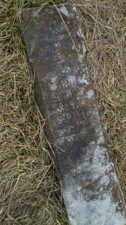 WESTBROOK EDDINS, NANCY P. - Wilson County, Tennessee   NANCY P. WESTBROOK EDDINS - Tennessee Gravestone Photos