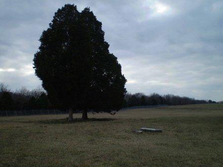 *EDDINS OVERVIEW,  - Wilson County, Tennessee |  *EDDINS OVERVIEW - Tennessee Gravestone Photos