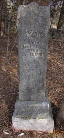 MARTIN, ALLEN JASPER - Wilson County, Tennessee | ALLEN JASPER MARTIN - Tennessee Gravestone Photos