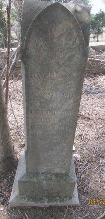 "MARTIN, MARY ELIZABETH ""MOLLIE"" - Wilson County, Tennessee | MARY ELIZABETH ""MOLLIE"" MARTIN - Tennessee Gravestone Photos"