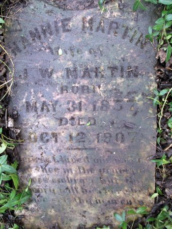 "MARTIN, NANCY ""NANNIE"" - Wilson County, Tennessee | NANCY ""NANNIE"" MARTIN - Tennessee Gravestone Photos"