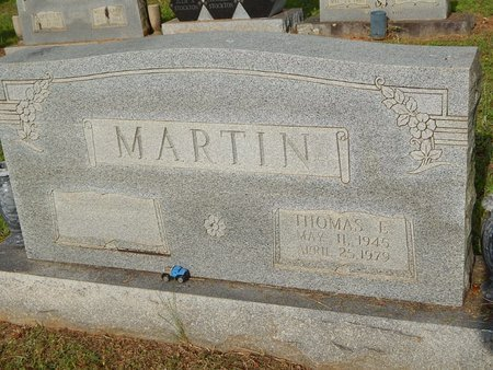 MARTIN, THOMAS E - Wilson County, Tennessee   THOMAS E MARTIN - Tennessee Gravestone Photos