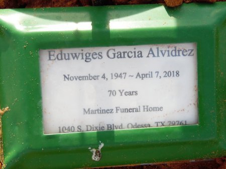 ALVIDREZ, EDUWIGES GARCIA - Andrews County, Texas | EDUWIGES GARCIA ALVIDREZ - Texas Gravestone Photos