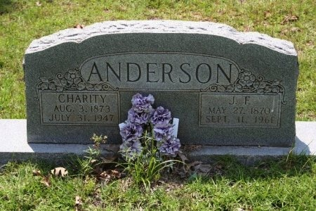 ANDERSON, JAMES F. - Angelina County, Texas | JAMES F. ANDERSON - Texas Gravestone Photos