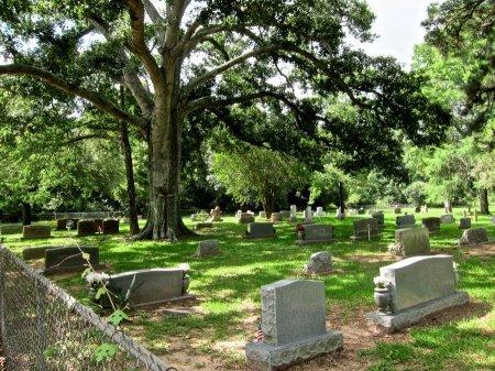 *CEMETERY VIEW,  - Austin County, Texas    *CEMETERY VIEW - Texas Gravestone Photos