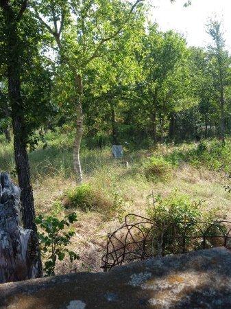 *CEMETERY VIEW,  - Bastrop County, Texas |  *CEMETERY VIEW - Texas Gravestone Photos