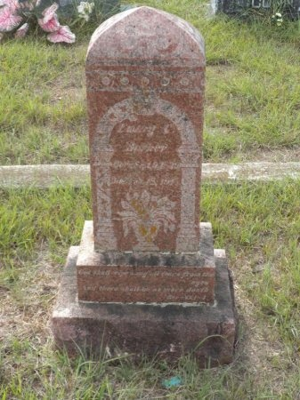 BARKER, EMORY CRAWFORD - Blanco County, Texas | EMORY CRAWFORD BARKER - Texas Gravestone Photos