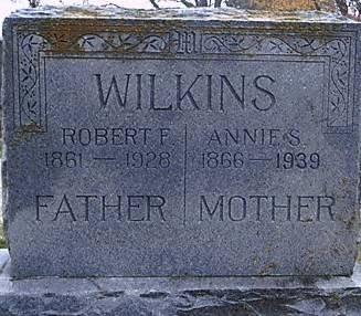 WILKINS, ANNIE ELIZA - Bosque County, Texas | ANNIE ELIZA WILKINS - Texas Gravestone Photos