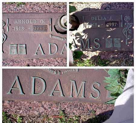 ADAMS, DELIA J - Bowie County, Texas | DELIA J ADAMS - Texas Gravestone Photos