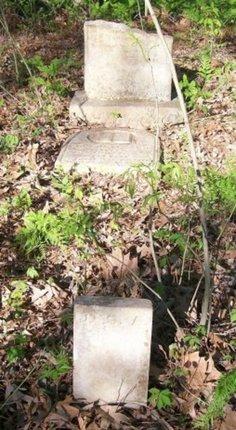 AKIN, JULIAN SIDNEY - Bowie County, Texas | JULIAN SIDNEY AKIN - Texas Gravestone Photos