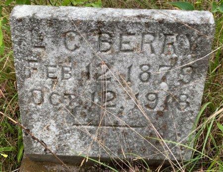 BERRY, L C - Bowie County, Texas   L C BERRY - Texas Gravestone Photos