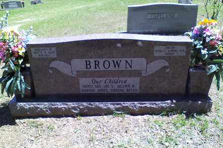 BROWN, ANNIE MAE (BACKVIEW) - Bowie County, Texas   ANNIE MAE (BACKVIEW) BROWN - Texas Gravestone Photos