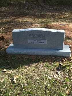 BROWN, CLAUDIA LEE (BACKVIEW) - Bowie County, Texas | CLAUDIA LEE (BACKVIEW) BROWN - Texas Gravestone Photos