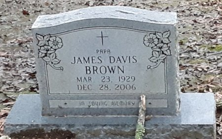 BROWN, JAMES DAVIS  - Bowie County, Texas | JAMES DAVIS  BROWN - Texas Gravestone Photos