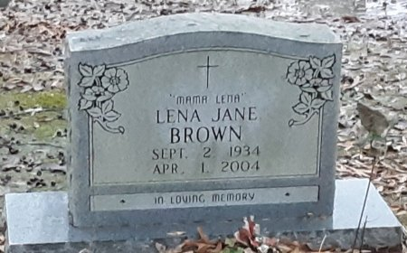 BROWN, LENA JANE  - Bowie County, Texas | LENA JANE  BROWN - Texas Gravestone Photos