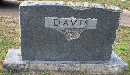 DAVIS, FAMILY MARKER - Bowie County, Texas | FAMILY MARKER DAVIS - Texas Gravestone Photos