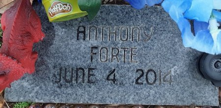 FORTE, ANTHONY - Bowie County, Texas | ANTHONY FORTE - Texas Gravestone Photos