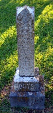FOSTER, JAMES F - Bowie County, Texas | JAMES F FOSTER - Texas Gravestone Photos