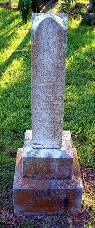 FOSTER, MARY ANN - Bowie County, Texas | MARY ANN FOSTER - Texas Gravestone Photos