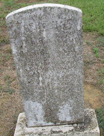 HILL, ALBERT - Bowie County, Texas | ALBERT HILL - Texas Gravestone Photos
