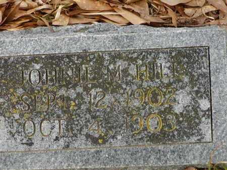 HILL, JOHNIE M - Bowie County, Texas | JOHNIE M HILL - Texas Gravestone Photos