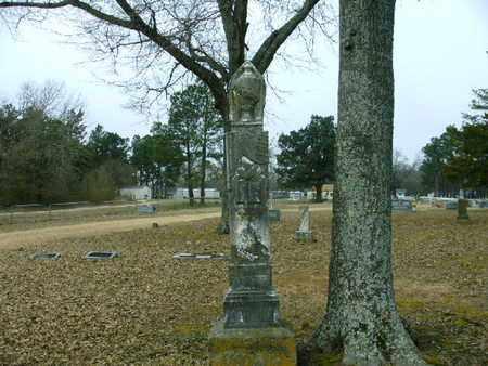 HILL, M E - Bowie County, Texas | M E HILL - Texas Gravestone Photos