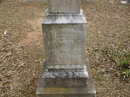NETTLES, MAY - Bowie County, Texas | MAY NETTLES - Texas Gravestone Photos