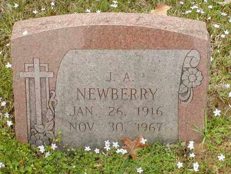 NEWBERRY, J A - Bowie County, Texas   J A NEWBERRY - Texas Gravestone Photos