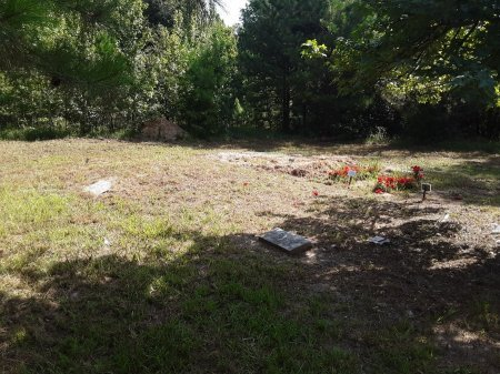 *OVERVIEW,  - Bowie County, Texas |  *OVERVIEW - Texas Gravestone Photos