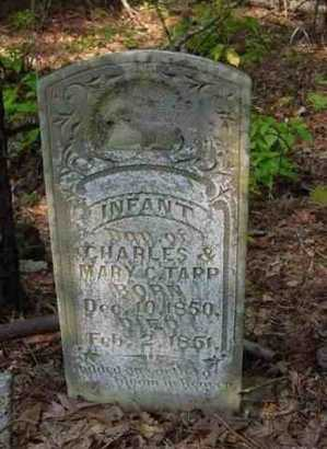 TAPP, INFANT DAUGHTER - Bowie County, Texas | INFANT DAUGHTER TAPP - Texas Gravestone Photos