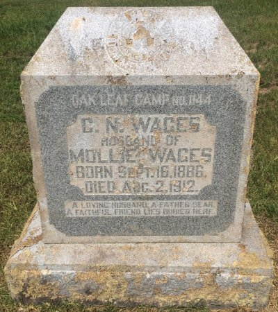 WAGES, C N - Bowie County, Texas | C N WAGES - Texas Gravestone Photos