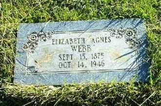 WEBB, ELIZABETH AGNES - Bowie County, Texas | ELIZABETH AGNES WEBB - Texas Gravestone Photos