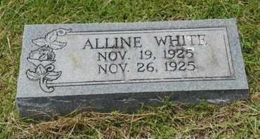 WHITE, ALLINE - Bowie County, Texas | ALLINE WHITE - Texas Gravestone Photos
