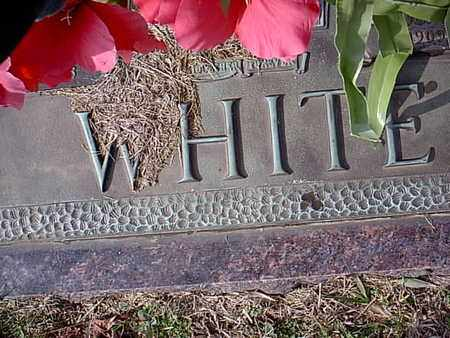 WHITE, TROY L - Bowie County, Texas | TROY L WHITE - Texas Gravestone Photos