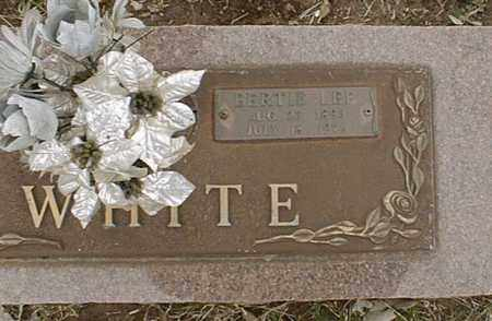WHITE, BERTIE LEE (CLOSEUP) - Bowie County, Texas | BERTIE LEE (CLOSEUP) WHITE - Texas Gravestone Photos