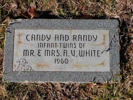 WHITE, RANDY - Bowie County, Texas | RANDY WHITE - Texas Gravestone Photos