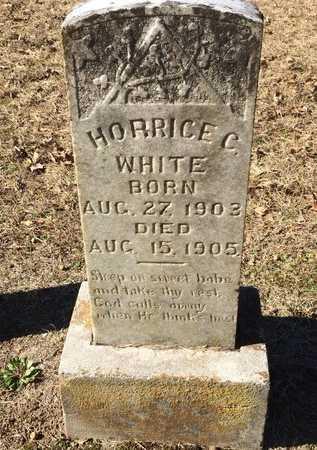 WHITE, HORRICE C. - Bowie County, Texas   HORRICE C. WHITE - Texas Gravestone Photos