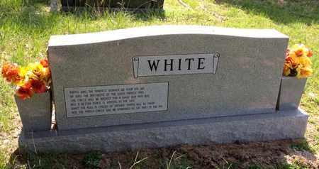 WHITE, MURRAY (BACKVIEW) - Bowie County, Texas | MURRAY (BACKVIEW) WHITE - Texas Gravestone Photos