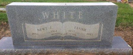 FOSTER WHITE, FANNIE - Bowie County, Texas | FANNIE FOSTER WHITE - Texas Gravestone Photos