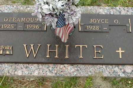 WHITE, OTEAMOUS - Bowie County, Texas | OTEAMOUS WHITE - Texas Gravestone Photos
