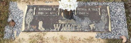WHITE, RICHARD H - Bowie County, Texas | RICHARD H WHITE - Texas Gravestone Photos