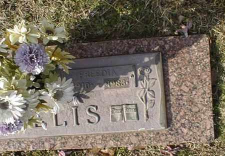 WILLIS, FREEDIA  (CLOSEUP) - Bowie County, Texas | FREEDIA  (CLOSEUP) WILLIS - Texas Gravestone Photos