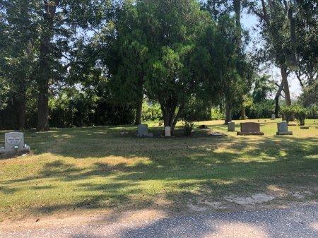 *BLUE LAKE CEMETERY VIEW,  - Brazoria County, Texas    *BLUE LAKE CEMETERY VIEW - Texas Gravestone Photos