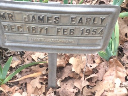 EARLY, JAMES - Burleson County, Texas | JAMES EARLY - Texas Gravestone Photos