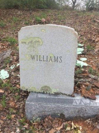 WILLIAMS, FAMILY STONE - Burleson County, Texas | FAMILY STONE WILLIAMS - Texas Gravestone Photos